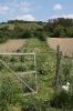 Gemeinschaftsgarten Gartenimpressionen 2015_1