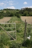 Gemeinschaftsgarten Gartenimpressionen 2015_2